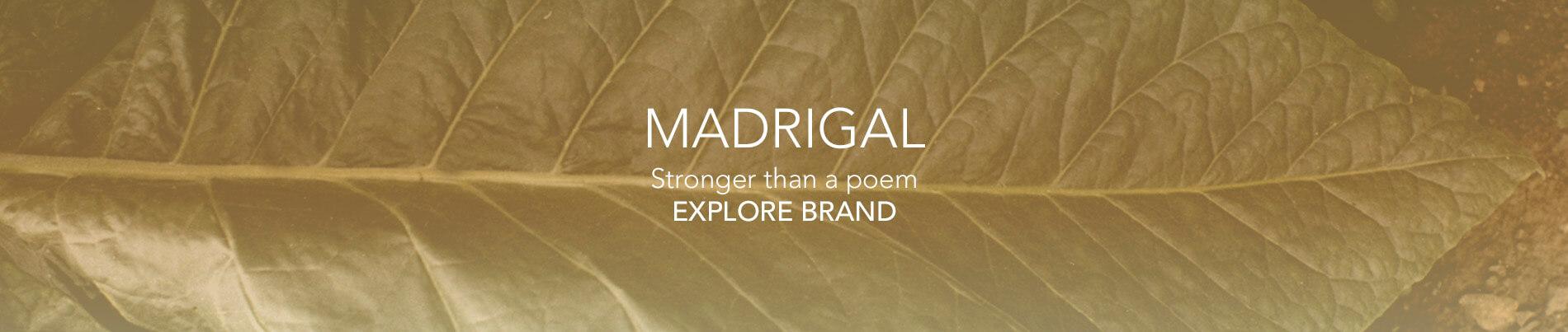 banner-madrigal